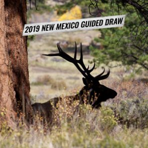 Preparing for the 2019 New Mexico guided draw