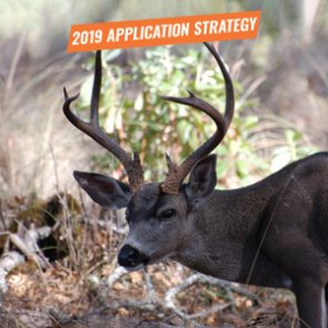 APPLICATION STRATEGY 2019: Oregon Deer