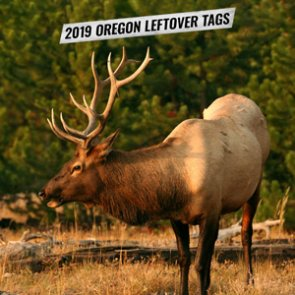 2019 Oregon leftover hunting tag list