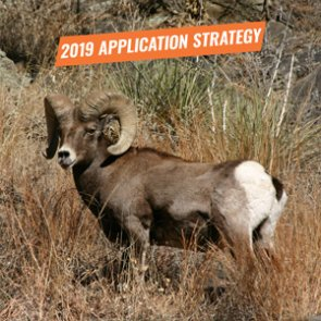 APPLICATION STRATEGY 2019: Oregon Bighorn Sheep and Mountain Goat