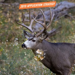 APPLICATION STRATEGY 2019: Utah Mule Deer
