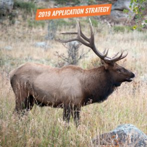 APPLICATION STRATEGY 2019: Utah Elk and Antelope