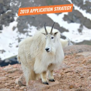 APPLICATION STRATEGY 2019: Utah Sheep, Moose, Goat, Bison