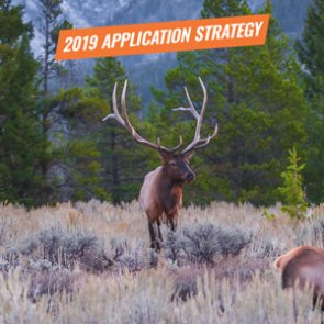 APPLICATION STRATEGY 2019: Wyoming Elk