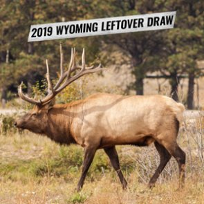 2019 Wyoming leftover draw license list now available