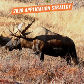 Application Strategy 2020: Alaska