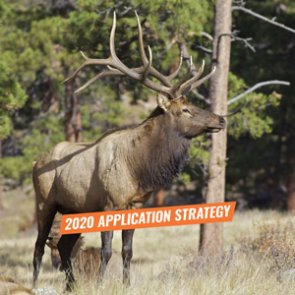 APPLICATION STRATEGY 2020: Arizona Elk