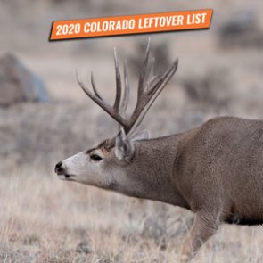 2020 Colorado leftover hunting license list