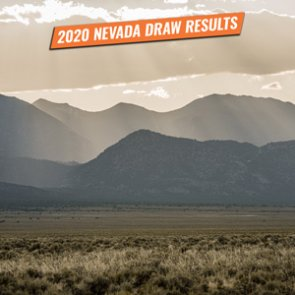 2020 Nevada draw results to be released at midnight tonight!