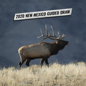 How to apply for New Mexico's 2020 guide draw