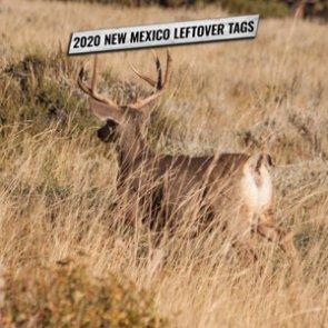2020 New Mexico leftover permit list
