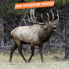 APPLICATION STRATEGY 2020: Wyoming Elk