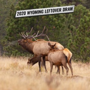 2020 Wyoming leftover draw license list now available