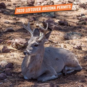 2020 Arizona fall leftover hunting permit list
