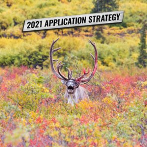 APPLICATION STRATEGY 2021: ALASKA