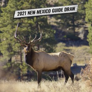How to apply for New Mexico's 2021 guide draw