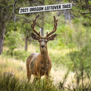 2021 Oregon leftover tag list now available