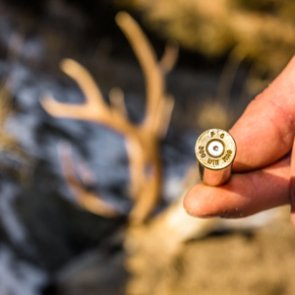8 ways to master long-range rifle shots