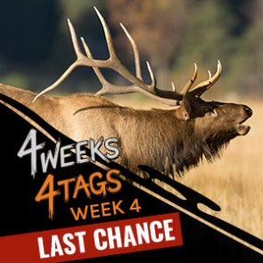 4W4T final week: Win an elk tag