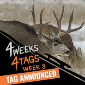 4 Weeks 4 Tags - Week 3 giveaway