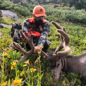 2019 Colorado high country early rifle mule deer hunt