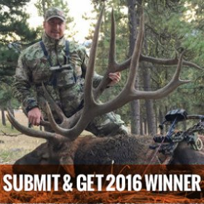 Submit and Get 2016 Grand Prize Winner