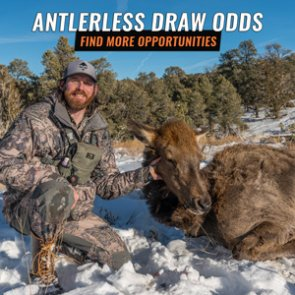 How to find antlerless draw odds on goHUNT INSIDER