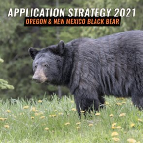 APPLICATION STRATEGY 2021: Oregon and New Mexico spring black bear overview