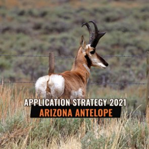 APPLICATION STRATEGY 2021: Arizona Antelope