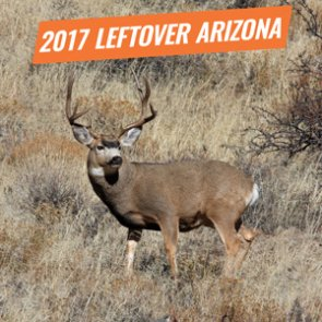 2017 Arizona leftover licenses now available