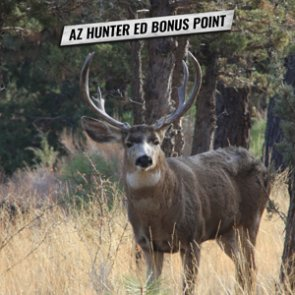 Arizona now offers an online course for a lifetime Hunter Ed bonus point