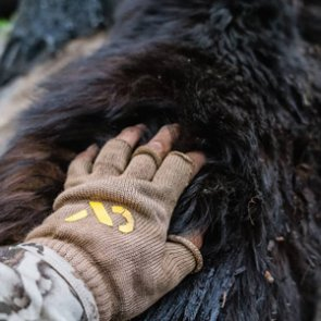 Looking for a spring bear hunt that's different than the norm?