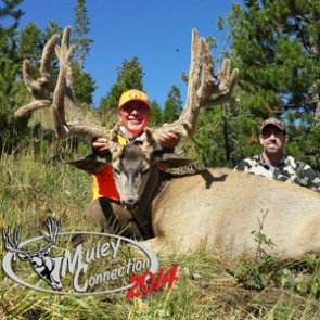 Biggest mule deer of 2014