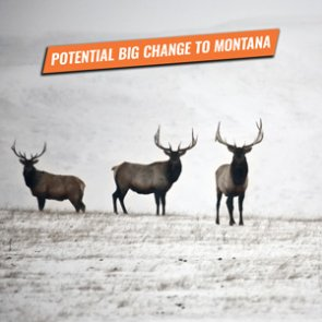 ALERT: New bill will greatly impact DIY nonresident hunters in Montana
