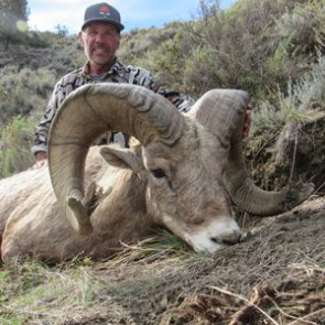 Beating the odds on a Montana bighorn sheep hunt