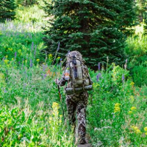 Bowhunting for success in the highcountry for mule deer