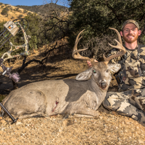 Coues deer: From dreams to reality