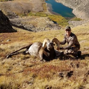 2018 Colorado bighorn sheep hunt