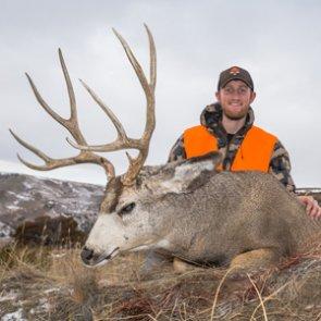 Breakdown of Montana's top late season over-the-counter mule deer hunts
