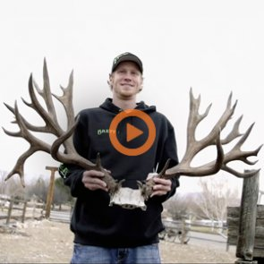 Colorado's Deer: Official trailer