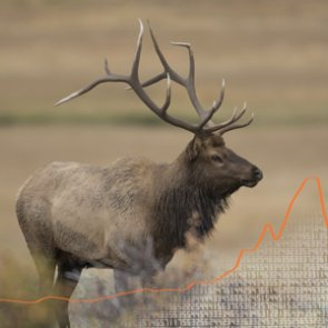 APPLICATION STRATEGY 2017: Colorado Elk and Antelope