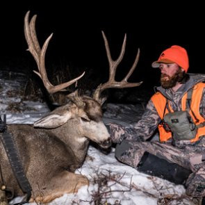 The question everyone's thinking… what Colorado season to apply for in 2021 for mule deer?
