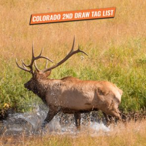 2020 Colorado second draw tag list