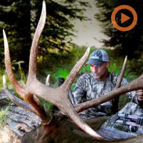 15 awesome elk hunting films to watch before the opener