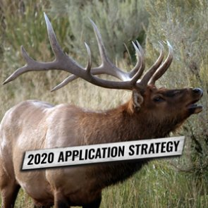 APPLICATION STRATEGY 2020: Nevada Elk and Antelope