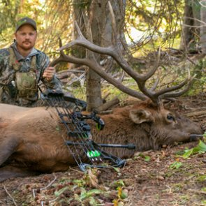 How to locate and hunt more elk
