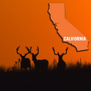 How to look up your California preference points