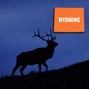 How to look up your Wyoming preference points
