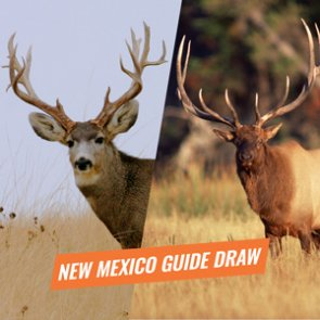 Preparing for the 2018 New Mexico guided draw
