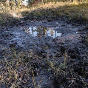 Early season elk tactics: How to effectively hunt elk wallows
